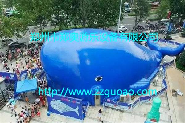 鲸鱼欢乐岛百万海洋球